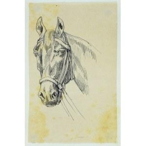 Tadeusz Rybkowski (1848-1926), Szkic głowy konia