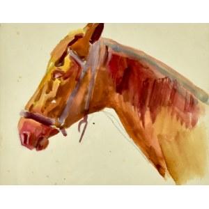 Stanisław KAMOCKI (1875-1944), Studium głowy konia z lewego profilu, 1917