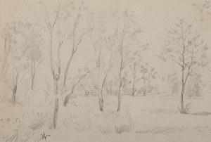 Wlastimil Hofman (1881 Praga - 1970 Szklarska Poręba), Pejzaż z drzewami