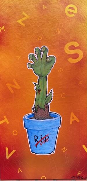 Karol Kubiński, Kaktus