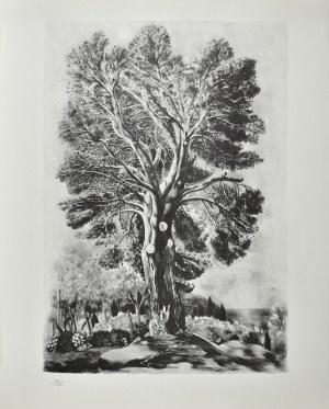 Mojżesz KISLING (1891 - 1953), Drzewo