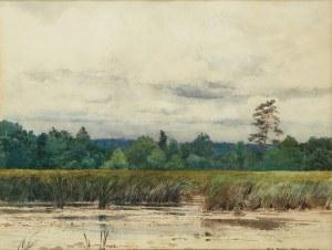 Józef Rapacki (1871 Warszawa - 1929 Olszanka k. Skierniewic), Mokradła w Mrozach, 1902 r.