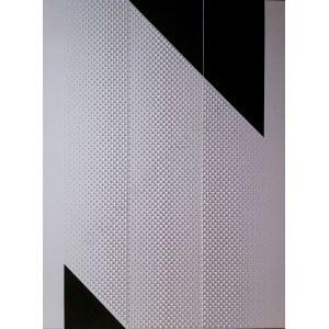 Dominik Janyszek, 4331