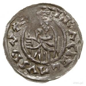 denar; Aw: Popiersie księcia z chorągwią w lewo, BRACIZ...