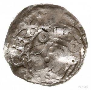 denar; Aw: Głowa w lewo, [HENRICV]S REX; Rw: Krzyż z ku...