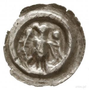 brakteat; Orzeł heraldyczny na wprost z głową w lewo; W...
