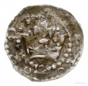 denar ok. 1320 r.; Aw: Korona lekko rozchylona i napis ...