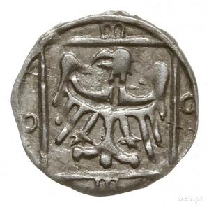 halerz miejski 1452-1460, Cieszyn; Aw: Gotycka litera T...
