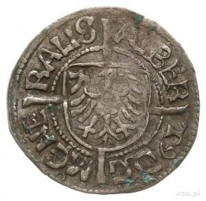 grosz 1521; Aw: Tarcza z Orłem brandenburskim i napis; ...