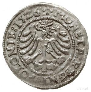 """grosz 1526, Kraków, herb Odrowąż pomiędzy """"ósemkami""""; P..."""