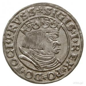 grosz 1532, Toruń, miecz z lewej strony Orła, końcówki ...