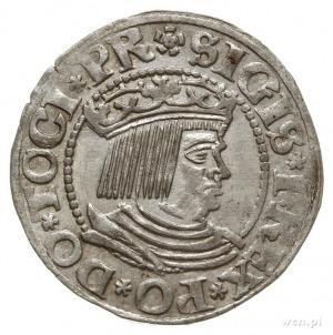 grosz 1532, Gdańsk, końcówka napisu PR; PN13.-Dut.157, ...