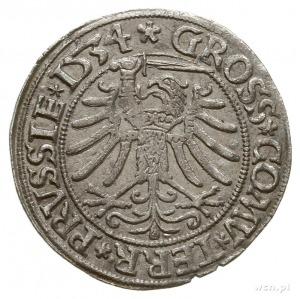 grosz 1534, Toruń, na awersie końcówka napisu ... PRVSS...