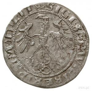 grosz na stopę litewską 1536 F, Wilno, odmiana z litera...