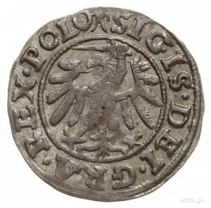 szeląg 1539, Gdańsk, hak na awersie / rozetka na rewers...