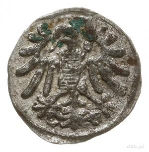 denar 1546, Gdańsk, krzyże w herbie miasta szerokie; CN...