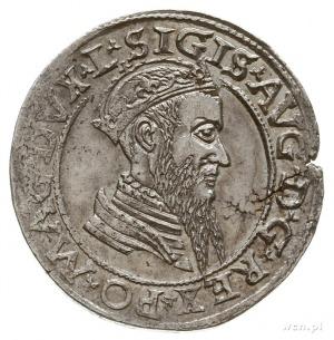czworak 1565, Wilno, końcówki napisów L/LITV odmiana z ...