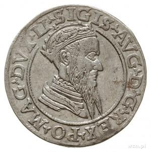 czworak 1568, Wilno, końcówki napisów LI/LITV, na rewer...