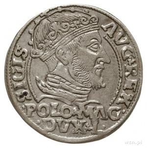 grosz na stopę polską 1548, Wilno; Ivanauskas 5SA8-4; ł...