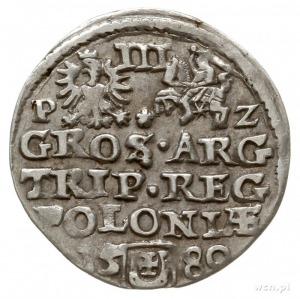 trojak 1580, Olkusz, Aw: mała głowa króla w prawo i nap...