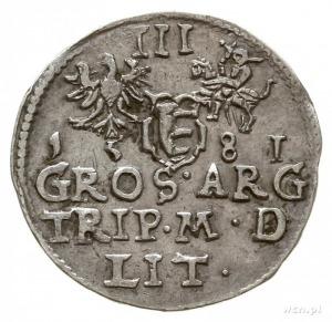 trojak 1581, Wilno, odmiana z herbem Leliwa pod popiers...
