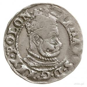 grosz 1579, Olkusz, Aw: Wąskie popiersie króla w prawo ...