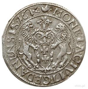 ort 1612, Gdańsk, kropka za łapą niedźwiedzia, na rewer...