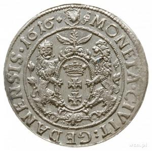 ort 1616, Gdańsk, mała głowa króla z szeroką kryzą, łap...