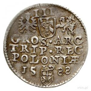 trojak 1588, Olkusz, duża głowa króla, na rewersie lite...