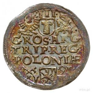 trojak 1591, Poznań; nienotowany w katalogu Igera typ p...