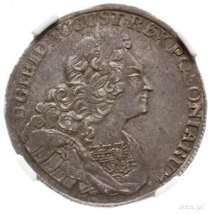2/3 talara (gulden) 1722, Drezno, Aw: Popiersie króla, ...