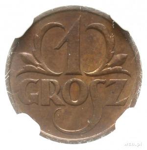 1 grosz 1925, Warszawa; Parchimowicz 101b; wyśmienicie ...