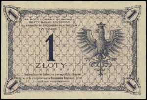 1 złoty 28.02.1919; seria 59 G, numeracja 032931; Lucow...