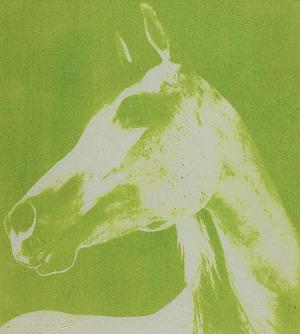 Marian GADZALSKI (1934-1985), Koń