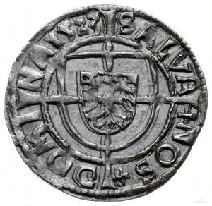 grosz 1523, Królewiec; ALBERT9 D G M GNERALIS / SALVA N...