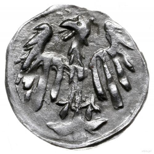 halerz ok. 1460?; Aw: Orzeł z uniesionymi skrzydłami na...
