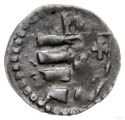 denar 1382-1386, Kraków; Aw: Orzeł heraldyczny na wpros...