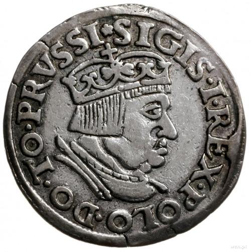 trojak 1536, Gdańsk; Gdańsk; popiersie króla z wąską gł...