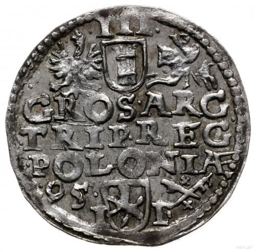 trojak 1595, Poznań; wydłużona twarz króla, wysoka koro...