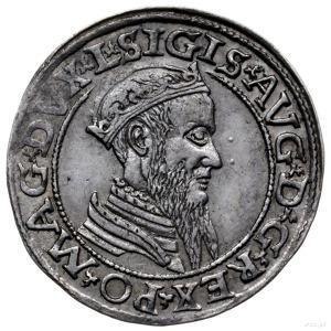czworak 1565, Wilno; końcówki napisów L/LITV; Cesnulis-...