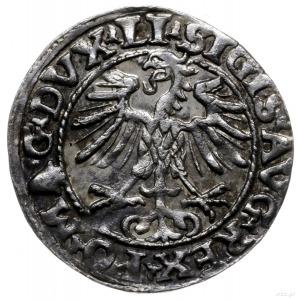 półgrosz 1554, Wilno; końcówki napisów LI/LITVA; Kop. 3...