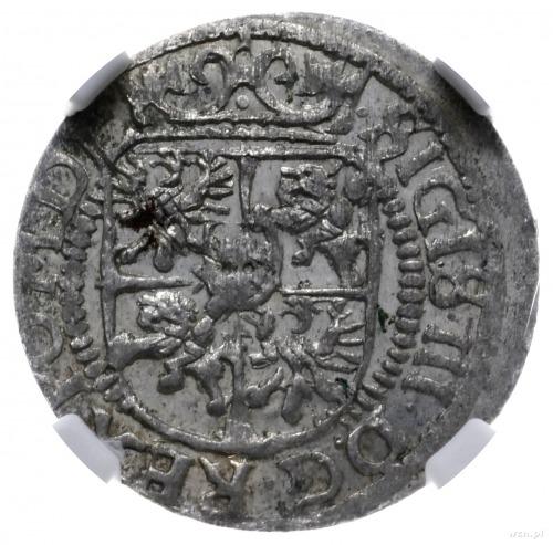 grosz 1617, Ryga; Aw: Tarcza herbowa pod koroną i napis...