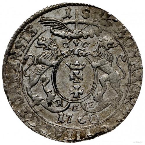 ort 1760, Gdańsk; odmiana z mieczem pomiędzy gałązkami ...