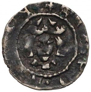 Kazimierz III Wielki, Denar Kraków