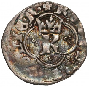Kazimierz III Wielki, Kwartnik ruski