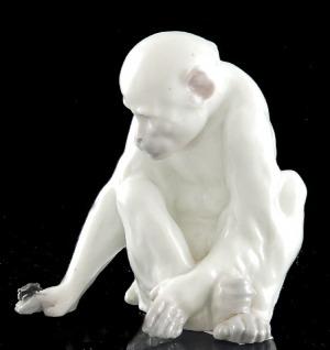 Małpka bawiąca się muchą