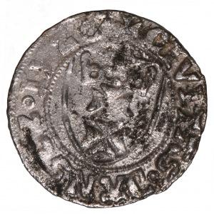 Zygmunt I Stary, szeląg 1526 Gdańsk - bardzo rzadki rocznik