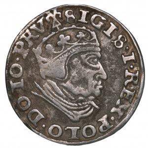 Zygmunt I Stary, trojak 1540 Gdańsk