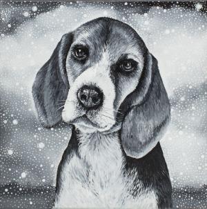 Marta Julia Piórko, Beagle, 2017