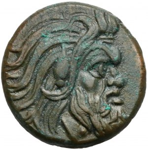Grecja, Pantikapajon, AE20 (310-303 pne)
